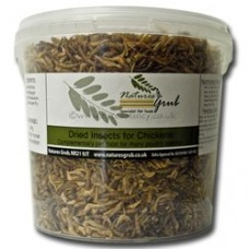 Natures Grub Insect Mix for Wild Birds